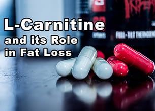 fat burners and l-carnitines